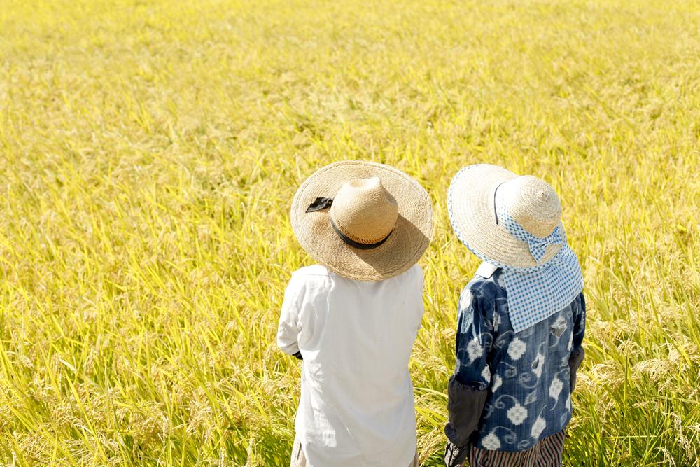 【日本】OECD、日本の農業について提言。デジタル農業推進に向け政策改革すべき 1