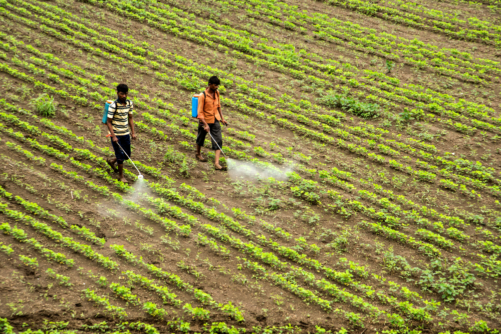 【国際】フェアトレード財団、農家向けに有毒農薬情報提供アプリ「Pesticides & Alternatives」提供 1