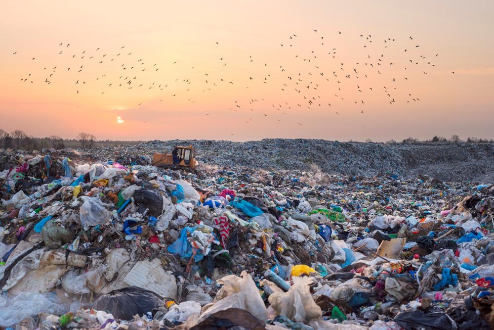 【国際】WWF、プラごみ削減イニシアチブ「ReSource:Plastic」発足。P&G、マクドナルド、コカ・コーラ等主導 1
