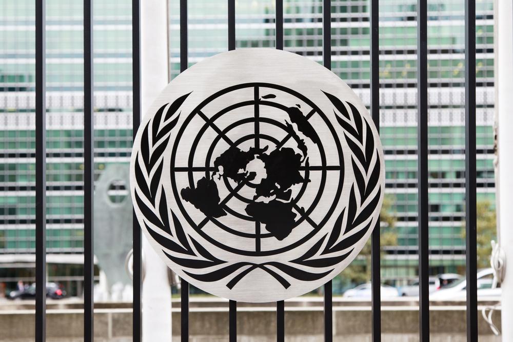 【国際】UNDP、開発金融に「Co-finance」概念重要と強調。国際機関・政府に啓蒙ガイダンス発行 1