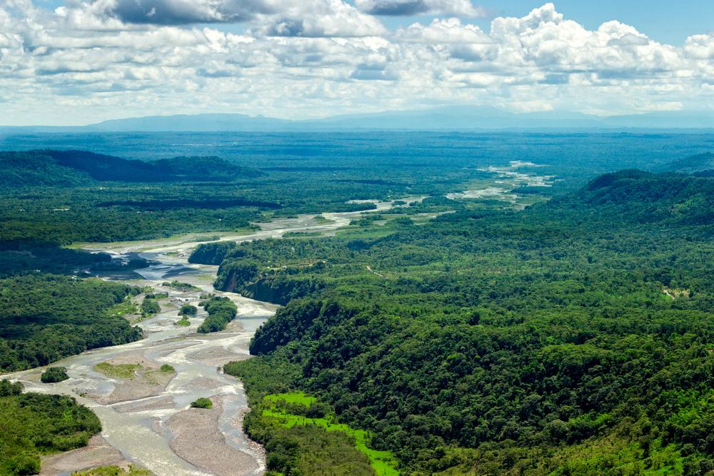【ブラジル】アマゾン熱帯雨林破壊が急速に増加傾向。新大統領の短期経済優先政策に警戒感 1