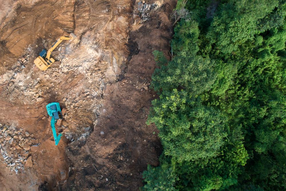【国際】CDP、森林破壊リスク分析レポート発表。アクション不十分。日本企業2社にも名指しで回答要請 1