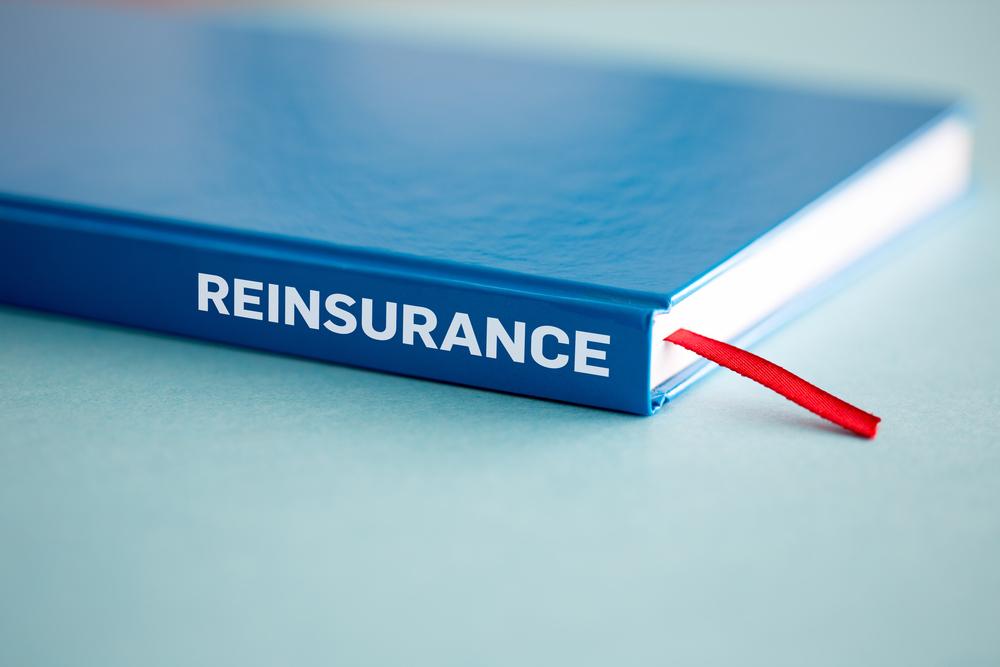 【日本】政府、NEXIによる再保険引受容認を閣議決定。欧米再保険大手の石炭保険禁止への対応か 1