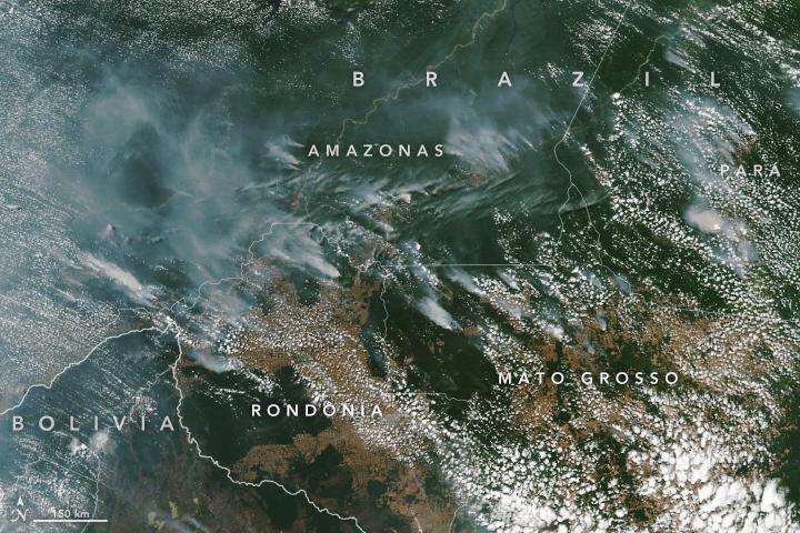 【ブラジル】アマゾンの大規模火災、現政権の環境軽視政策が原因か。欧州主要国も支援停止 1
