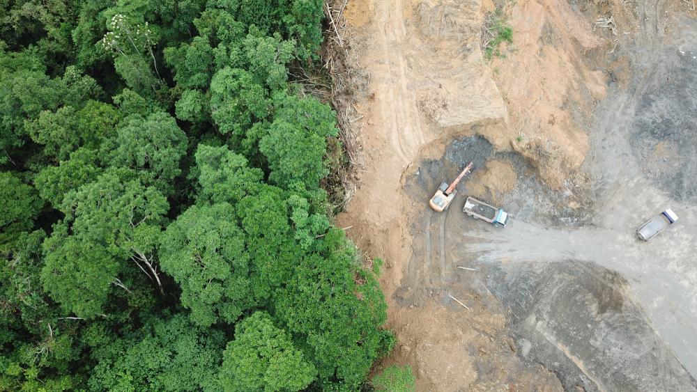 【国際】UNEPとOHCHR、環境活動家への人権侵害問題対応で連携強化。各国政府にも対応促す 1