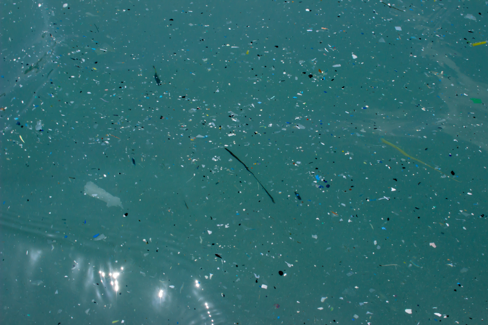 【国際】WHO、海洋プラスチックの健康リスクに関する研究推進を要求。リスク判定には情報不足 1