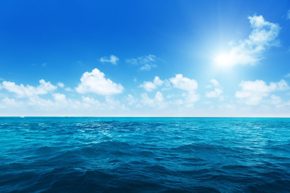 【イギリス】政府、世界海洋の30%を2030年までに海洋保護区にする「30by30」発足。10ヶ国参加 1