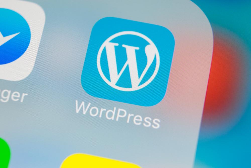 【国際】Wordpress等6000サイト、9月20日「デジタル気候ストライキ」に参加。パタゴニアは店舗休み 1