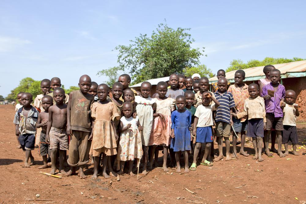 【ウガンダ】NGO、林業大手の農民立ち退き行為非難。株主の北欧開発銀行と環境認証機関の責任追及 1