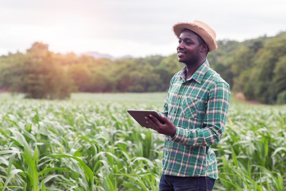 【東アフリカ】キャップジェミニ、小規模農家向けAI活用ツール提供開始。現地支援企業との共同開発 1