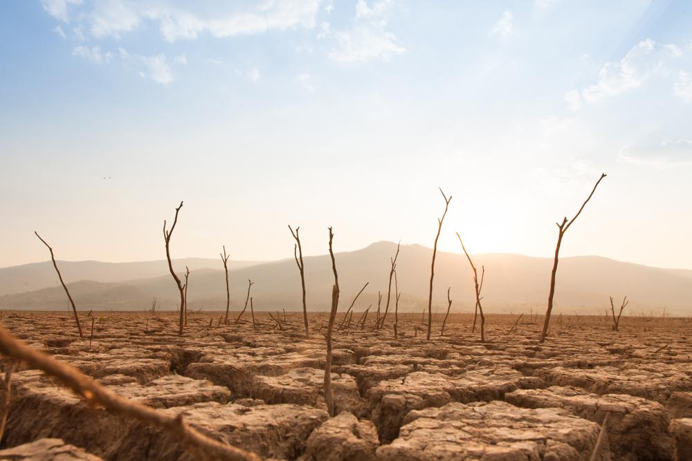 【アメリカ】環境NGO11団体、CEOに気候変動対策を推進するロビー活動を要請。機関投資家アクションに呼応 1
