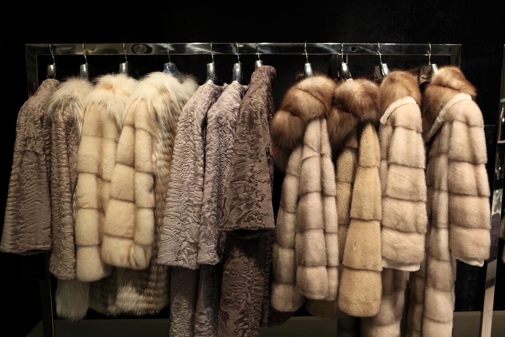 【アメリカ】カリフォルニア州、毛皮製品の製造・販売禁止州法制定。動物利用サーカスも禁止 1