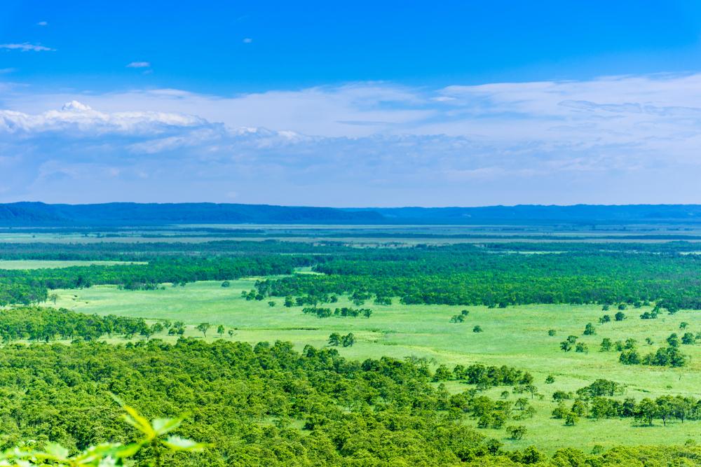 【日本】環境省、ラムサール条約の湿地自治体認証制度を創設。都道府県・市町村の双方 1