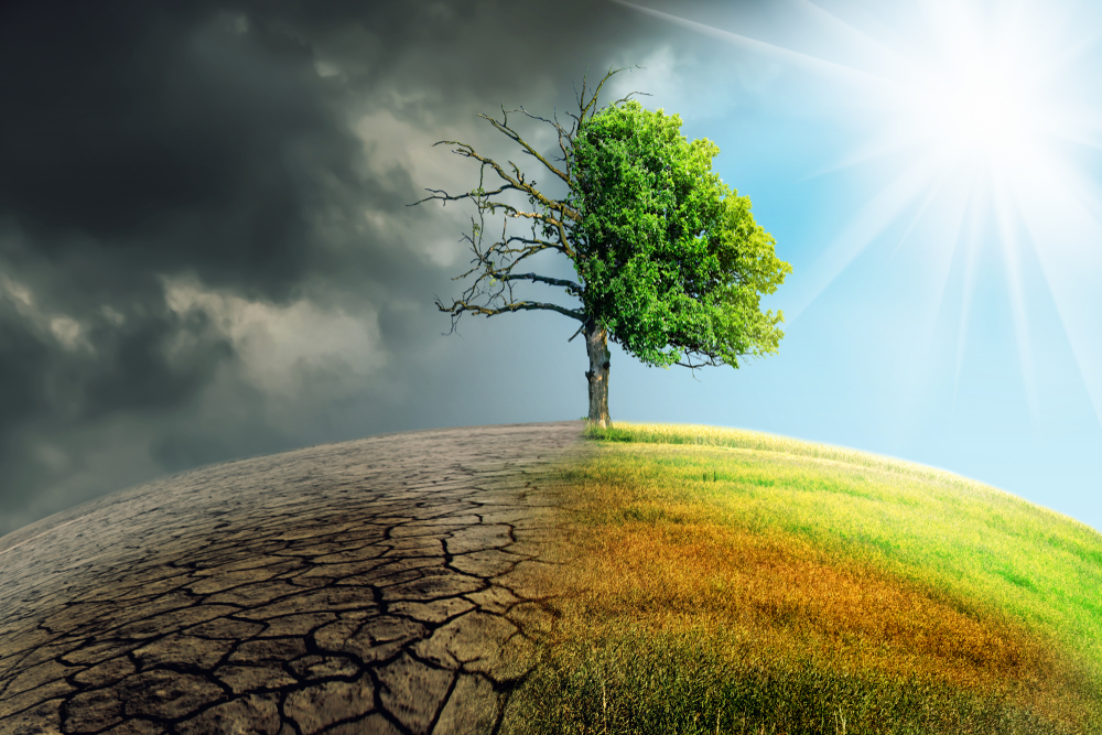 【国際】グッチ、気候変動対策でサプライチェーン全体でのCO2オフセット提唱。世界のCEOへ参画呼びかけ 1