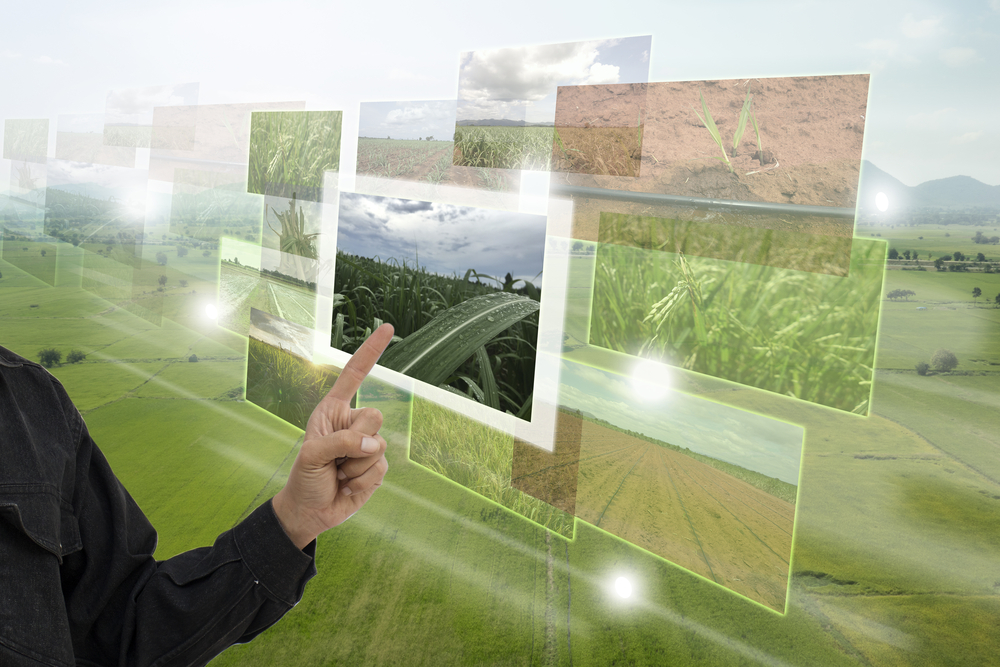 【国際】WMO、食料安全保障のために気候変動情報サービスの必要性強調。特に途上国で大きな課題 1
