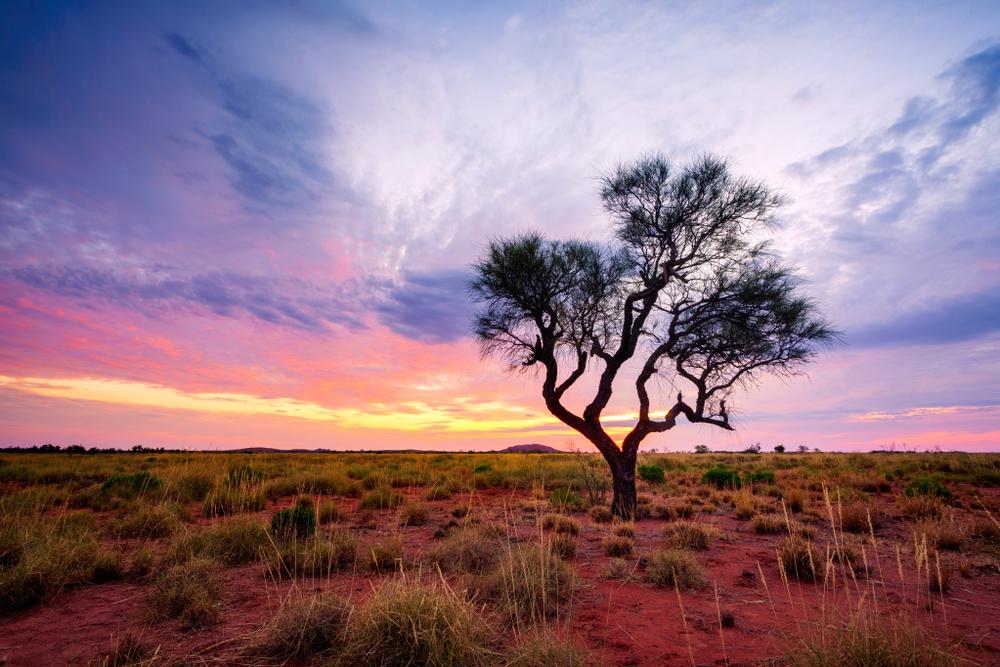 【オーストラリア】政府、国内での廃プラ・リサイクルに警鐘。2018年のリサイクル率わずか9% 1