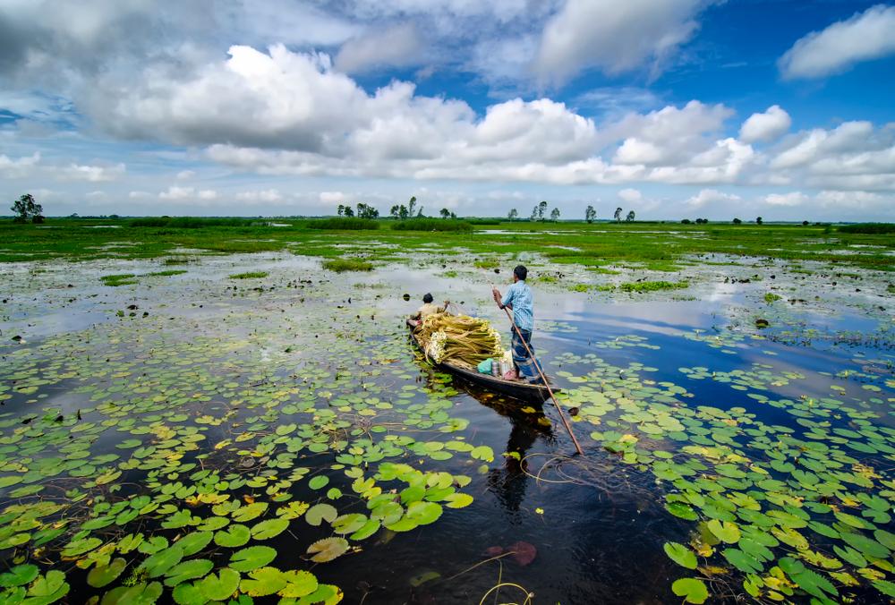 【国際】適応グローバル委員会、地方政府の気候変動適応支援でアクション発足。国際機関・NGO多数参画 1