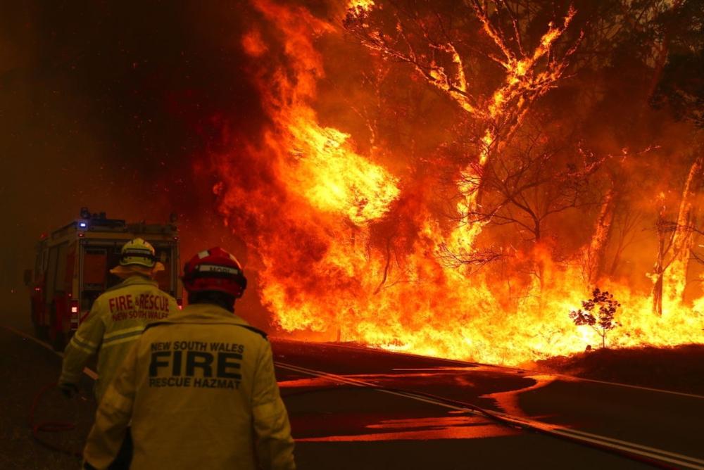 【オーストラリア】南東部の山火事、10万km2焼失。コアラ8000頭死亡。フェイスブックで55億円寄付集まる 1