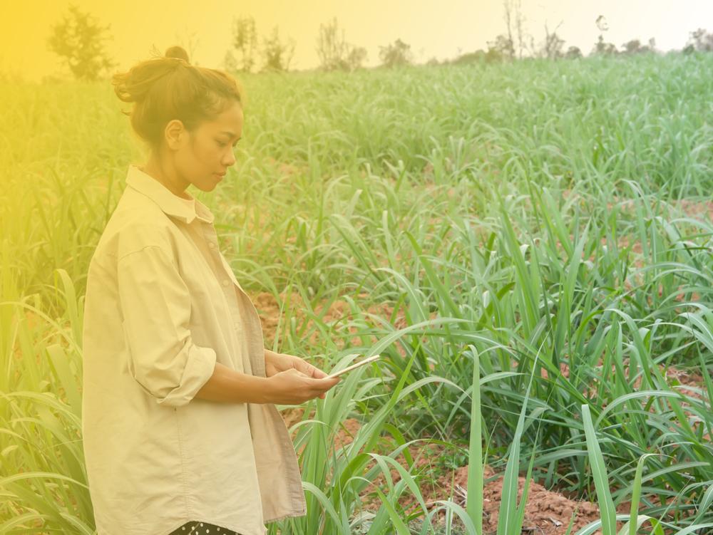 【国際】UNDPや各種団体、新型コロナで移民労働者やサプライヤー従業員の人権保護要請。アパレルと食品 1