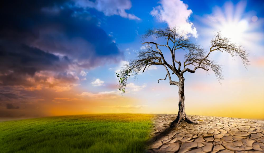 【国際】機関投資家団体Climate Action 100+、161社にカーボンニュートラル要求。日本企業も10社対象 | Sustainable Japan | 世界のサステナビリティ・ESG投資・SDGs