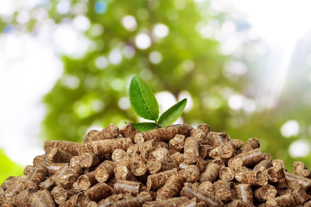 【環境】石炭火力から木質バイオマスへの燃料転換の可能性~米国産業用木質ペレット協会(USIPA)の視点~ 1