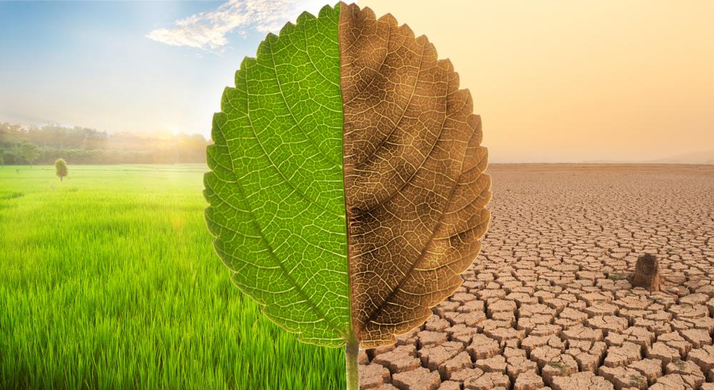 【国際】58ヶ国・地域の気候変動対策ランキング、日本は48番目。ジャーマンウォッチCCPI2021年版 1