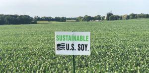 【インタビュー】アメリカ大豆輸出協会地域代表が語る大豆の未来~SSAP認証の特徴と展望~ 4